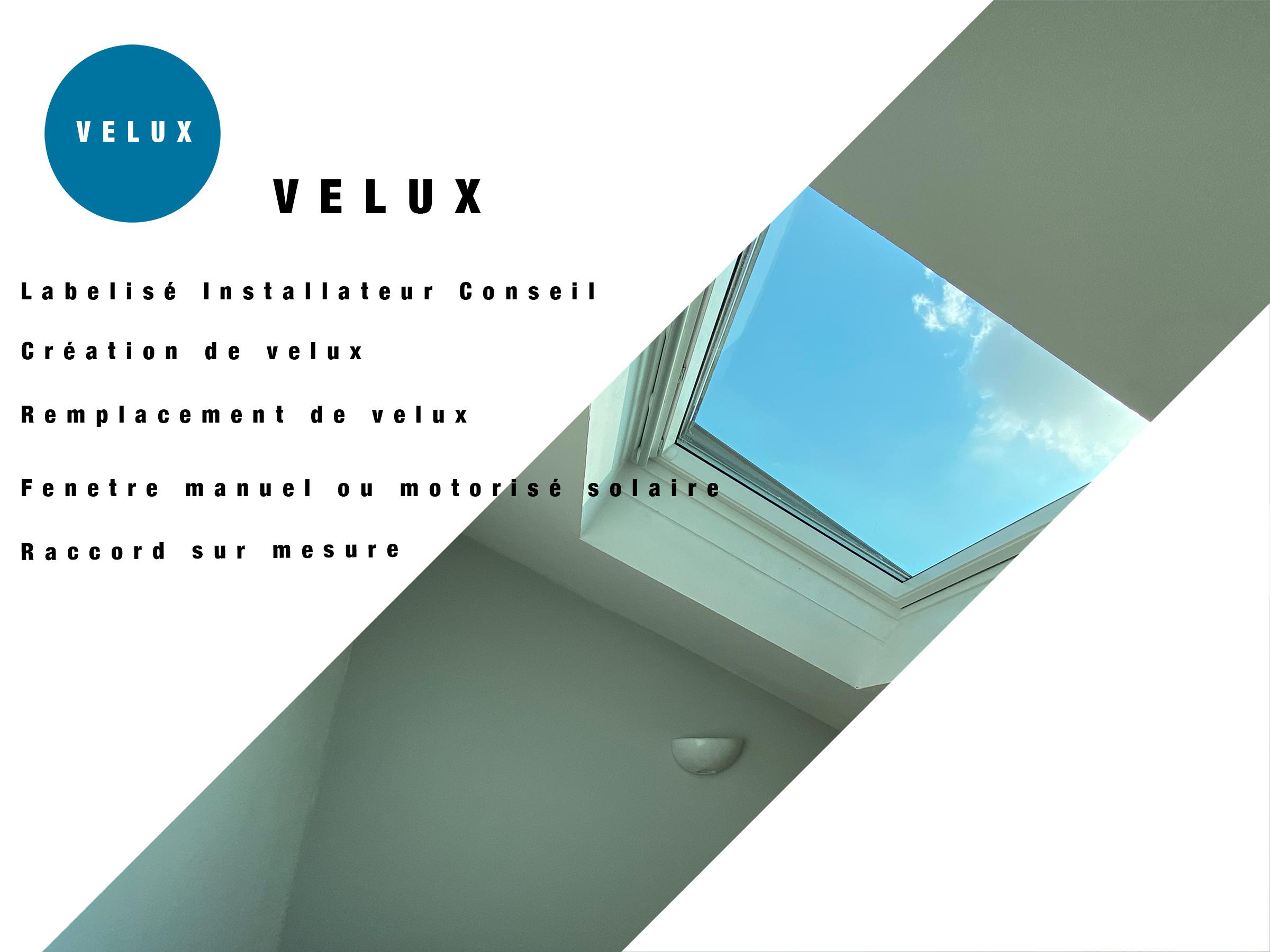 catégorie Velux